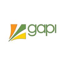 logotipo da GAPI
